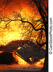 Fire Tree - A blazing house fire behind an old oak tree...