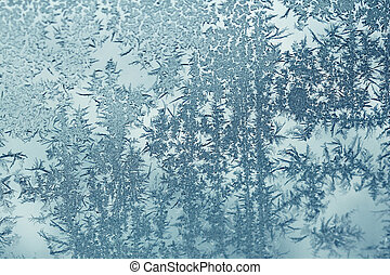 Frosty Forest - Frost design found early in the morning on a...