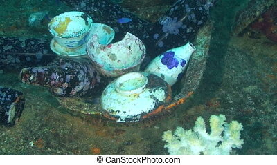 Truk Lagoon - Artifacts found while wreck diving in Truk...