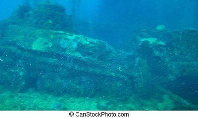 Sunken Tank in Truk Lagoon - Tank covered in corral on the...