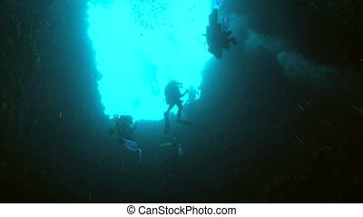 Scuba Divers - Scuba divers from below, Palau, Micronesia