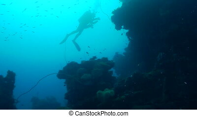 Truk Lagoon - Scuba Diver swimming by a corral covered ship...