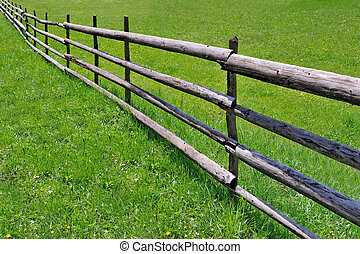 Fence on green meadow