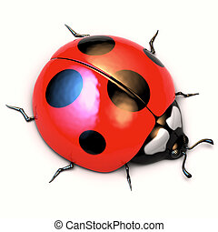 Ladybird isolated on white background - A 3d illustration of...