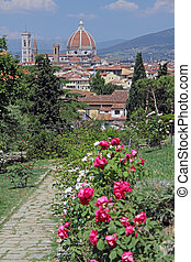 view of Florence from florentine Garden of Roses - Garden of...