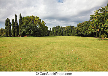 Huge yellowed field in a luxurious Italian park-garden...
