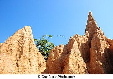 Vulture dry landscape