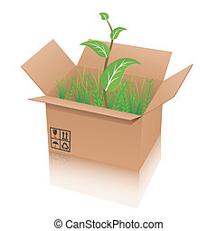 recycle shipping box with plant