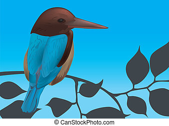 Kingfisher Bird Vector Illustration with Blue Sky in the...