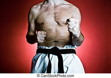 Karate training, sport and fitness in gym - Young man...