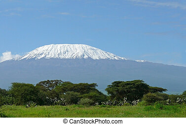 Kilimanjaro in Kenya - Landscape with snow covered peak of...