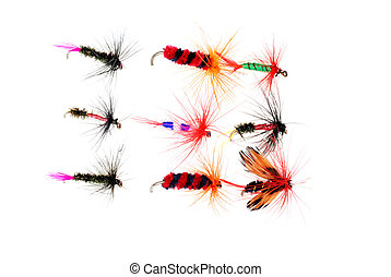 Isolated dry fishing flies on white background