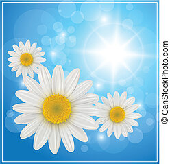 Blue background - Sunny blue background with daisy flowers,...