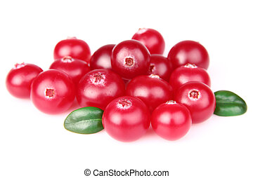 Sweet cranberry - Heap of sweet cranberry