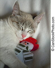 young cat cuddling with snowman toy