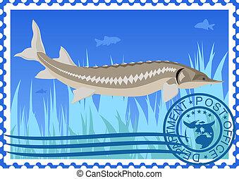 Postage stamp. Sturgeon