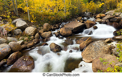 Colorado Rocky Mountain Stream in Fall - Yellow aspen leaves...