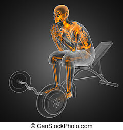 human radiography scan in gym room