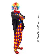 Proud clown standing - Proud clown in colorful wearing,...