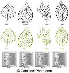 Tree Leaf Type Set - An image of a set of birch, dogwood,...