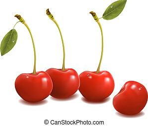 Sweet cherries with leaves. Vector.