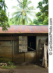 house in jungle Big Corn Island Nicaragua - cement and wood...