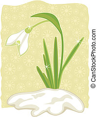 Snowdrop emerged from snow on decorative background