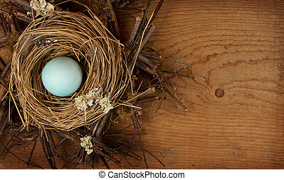 Single blue egg in a nest, with a wooden background - A...