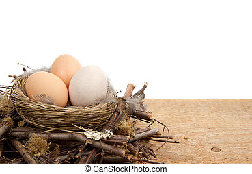 Brown eggs in a nest with a white background - Brown eggs in...