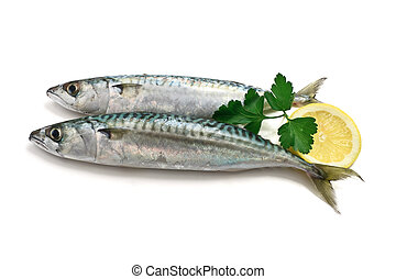 two mackerel with lemon - two fresh mackerel fish with lemon...
