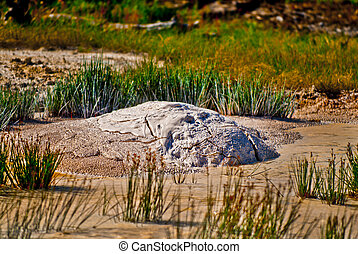 Mud Vulcano Yellowstone