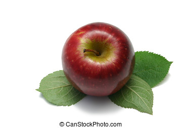 One Apple - Single red apple (Sundowner), with leaves,...