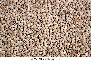 lentil seeds close up texture