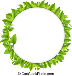Circle With Green Leafs, Isolated On White Background,...