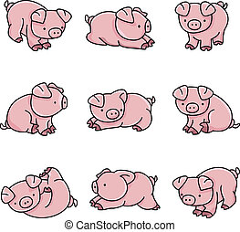 Baby Pigs - Image representing a baby pigs, isolated on...