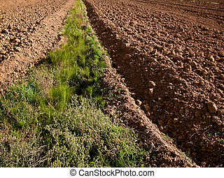 Agriculture - Plowed ground, with brown stones and loose...