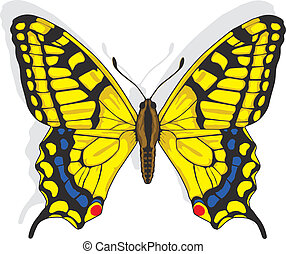 Swallowtail butterfly - Painted Swallowtail butterfly Vector...