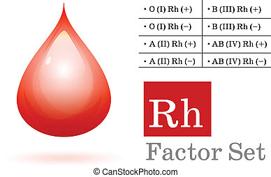 Rh factor and blood drop on white Vector ilustration