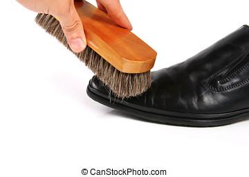 main, brosse, nettoyage, chaussure