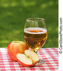 Apple cider and apples on the summer picnic