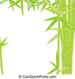 summer green bamboo frame - summer bamboo frame on white...
