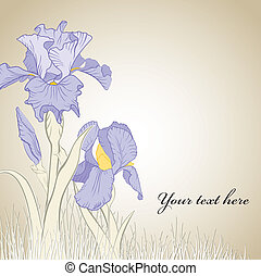 spring iris flower on brown background