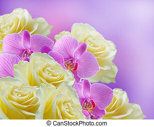 Orchids and  roses - Pink orchids and yellow roses