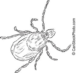 House dust mite allergy. Vector illustration done in manual...