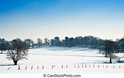 Winter rural countryside landscape on bright blue sky day