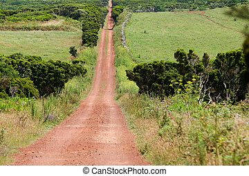 dirt road in fields