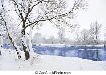 winter river - frozen river and trees in winter season