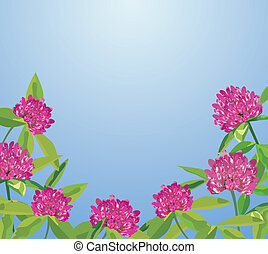 Background with clover flowers