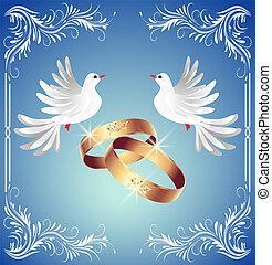 casório, Anéis, dois, Pombas