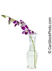 Purple Flowers in a Vase - Purple flowers on stem in glass...